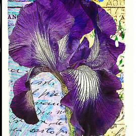 Tina LeCour - Purple Iris