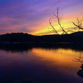 Michael Scott - Purple Lake