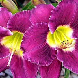 Jean Hall - Purple Lilies