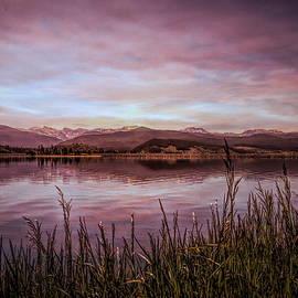 Judy Vincent - Purple Mountain Majesties