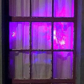 Michael Hoard - Purple Panes Illuminate