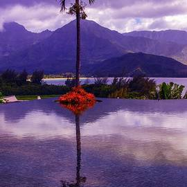 Lynn Bauer - Purple Reflections in Princeville