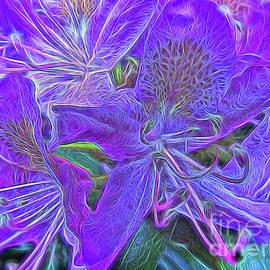 Purple Rhododendron by Catchavista