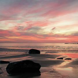 Ellen Weist - Purple Sunrise