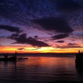 Sarah Rosenthal - Purple sunset