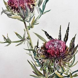 Purple Thistle by Mindy Newman