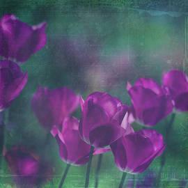 Margaret Goodwin - Purple Tulips