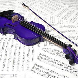 Purple Violin And Music Xiv by Helen Northcott