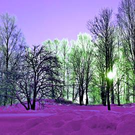 Dagmar Batyahav - Purple Zone