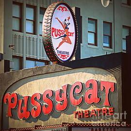 Pussycat Theatre by Tru Waters