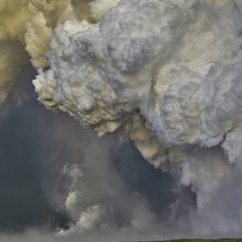Pyrocumulus Cloud Over a Golden Sea by Heidi Fickinger