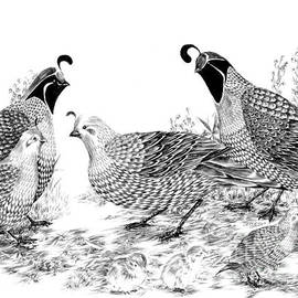 Alice Chen - Quail Family Reunion