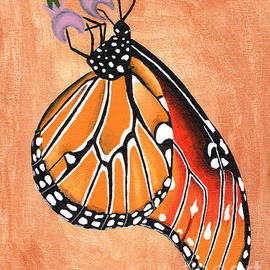 Queen Butterfly by Kasia Bitner