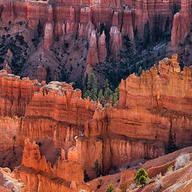 Thomas Schoeller - Queens Garden Overlook - Bryce Canyon NP