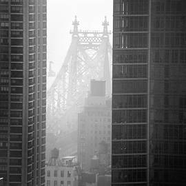 Jeff Corwin - Queensboro Bridge
