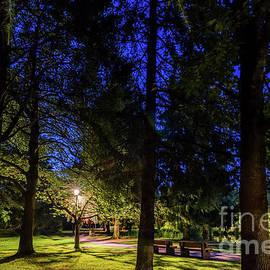 Peaceful night in the Minoru park by Viktor Birkus
