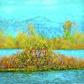 Quiet Pond Mood by Joel Bruce Wallach