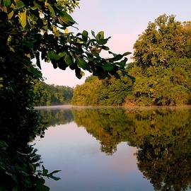 Arlane Crump - Quiet Reflections - Dan River