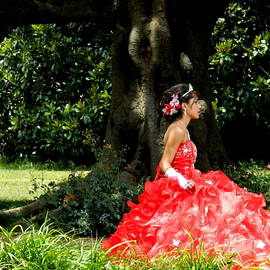 People Series - Quinceanera  by Arlane Crump
