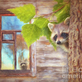 Raccoon Lookout by Tim Wemple