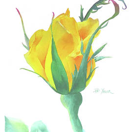 Pat Yager - Radiant Perfume Rosebud