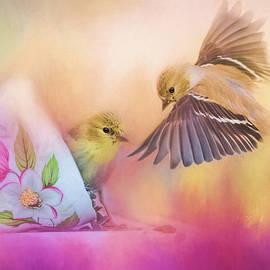 Raiding the Teacup - Songbird Art by Jai Johnson