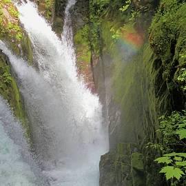 Dan Sproul - Rainbow At Sol Duc Falls Washington