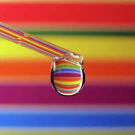 Rainbow Drop - Vesna Viden
