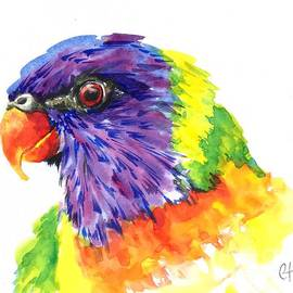 Chris Hobel - Rainbow Lorikeet