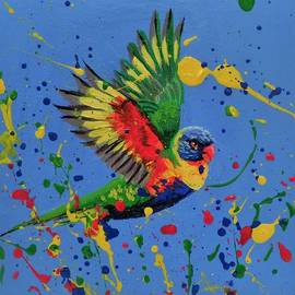 Anne Gardner - Rainbow splash