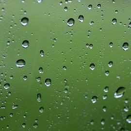 Raindrops  2 by Charles Bacon Jr