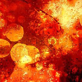 Andrew Hunter - Raindrops And Bokeh Abstract