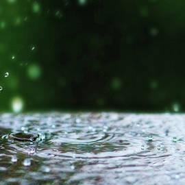 Lisa Knechtel - Raindrops Rejuvinate