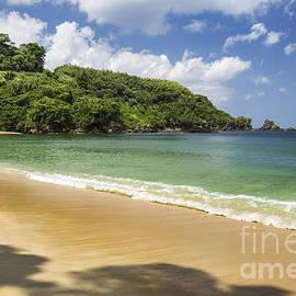 Hugh Stickney - Rainforest Beach