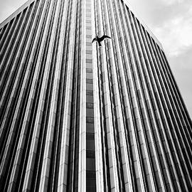 Rainier Tower by Joshua Spiegler