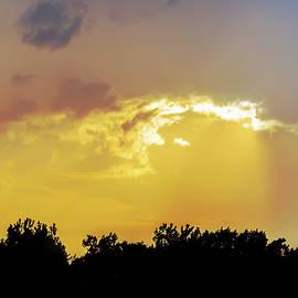 Brian Wallace - Raining Sunshine Silhouette