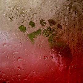Anna Lisa Yoder - Rainy Day Hand Fist Footprint