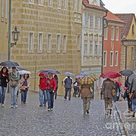 Ann Horn - Rainy Day Prague