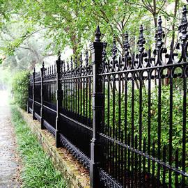 Sylvia Cook - Rainy Day Walk