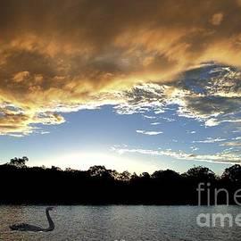 Geoff Childs - Rathmines Sunset with Swan. Original exclusive photo art.