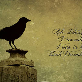 Brenda Conrad - Raven Card