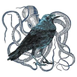 Raven Dreams Of The Octopus by Sandra McGinley