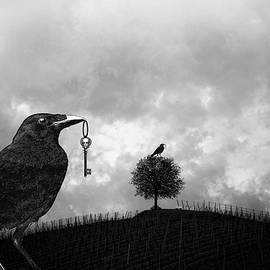 Raven Steals A Skeleton Key And Sits On A Tree  by Sandra McGinley