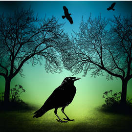 Raven Trees And Night Fog by Sandra McGinley