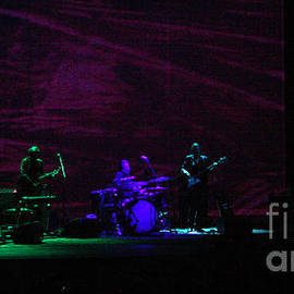 Gary Gingrich Galleries - Ray LaMontagne Band-9140