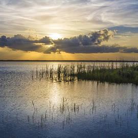 Rays Over the Marsh by Debra and Dave Vanderlaan