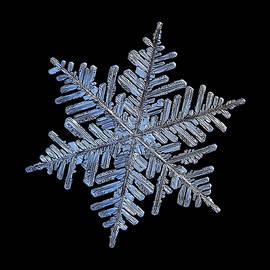 Alexey Kljatov - Real snowflake - 2017-02-13 4 black