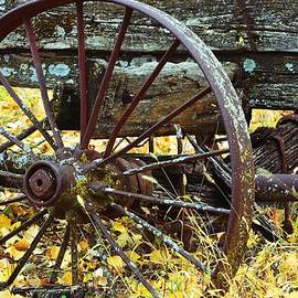 Audie T Photography - Really Old Wagon