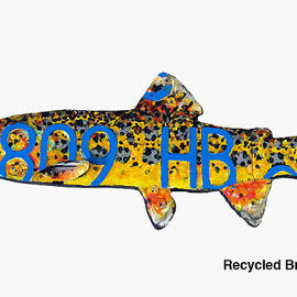 Recycled Brook Trout by Bill Thomson