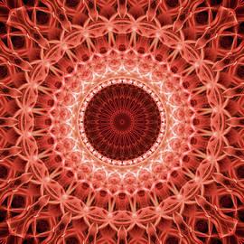Jaroslaw Blaminsky - Red and orange mandala